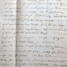 Wilhelm Steuerwaldt Brief